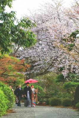 迎賓館サクラヒルズ川上別荘/ゲイヒンカンサクラヒルズカワカミベッソウ:写真10