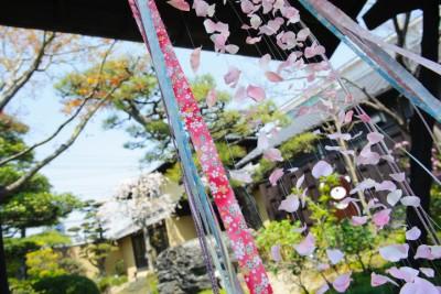 花の宴(hana no utage)/ハナノウタゲ:写真19