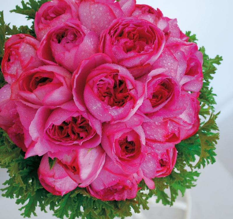 green&flower puhara/グリーンアンドフラワープハラ:メイン写真